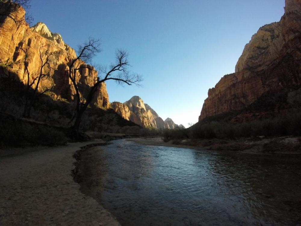 I can safely say Zion is the most beautiful place I have been so far.
