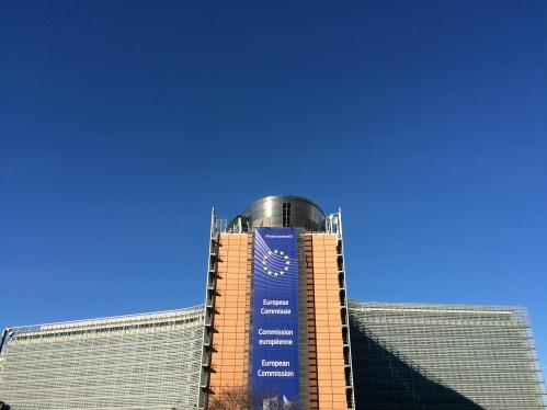 European Commission SL